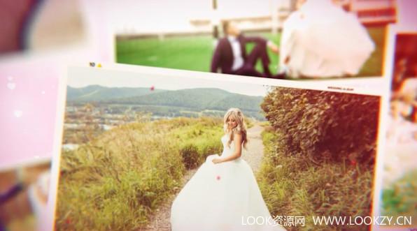 AE模板-唯美婚庆花瓣飘散电子相册模板Wedding 免费下载