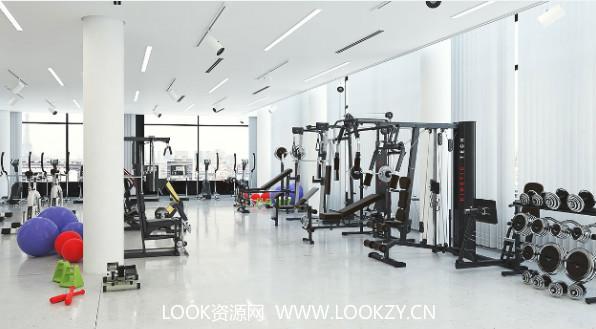 3D模型-169个健身器材模型 格式支持.max .c4d .obj .fbx