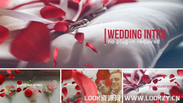 AE模板-玫瑰花瓣浪漫婚礼爱情相册包装幻灯片模板