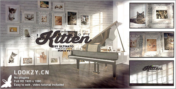 AE模板-相框画廊相册照片展示幻灯片模板 Kitten Loft