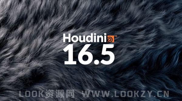 电影特效三维软件SideFX Houdini FX 16.5.496 Win破解版