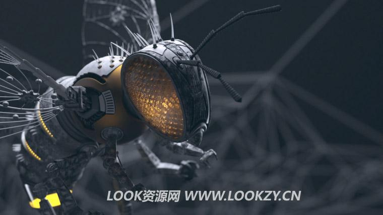 Modo Vray渲染器插件 V-Ray Next v4.12.01 WIN破解版下载