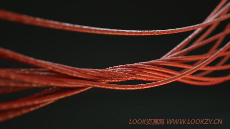 C4D插件-绳子快速生成插件 HoRope master WIN中文汉化版