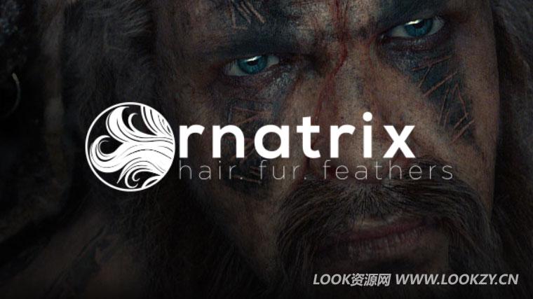 Maya插件-毛发头发羽毛模拟插件 Ephere Ornatrix V2.3.7.19651 Win破解版