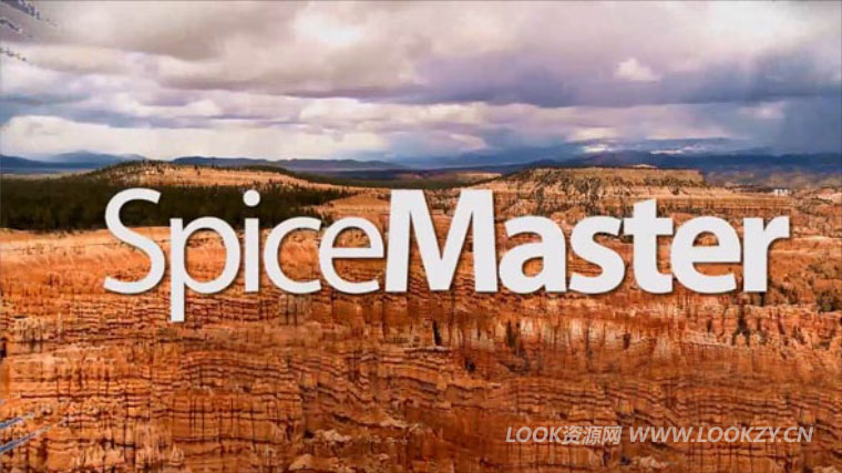 Ae/Pr/Vegas插件-600种顶级香料转场插件 SpiceMaster Pro 3.02 Win